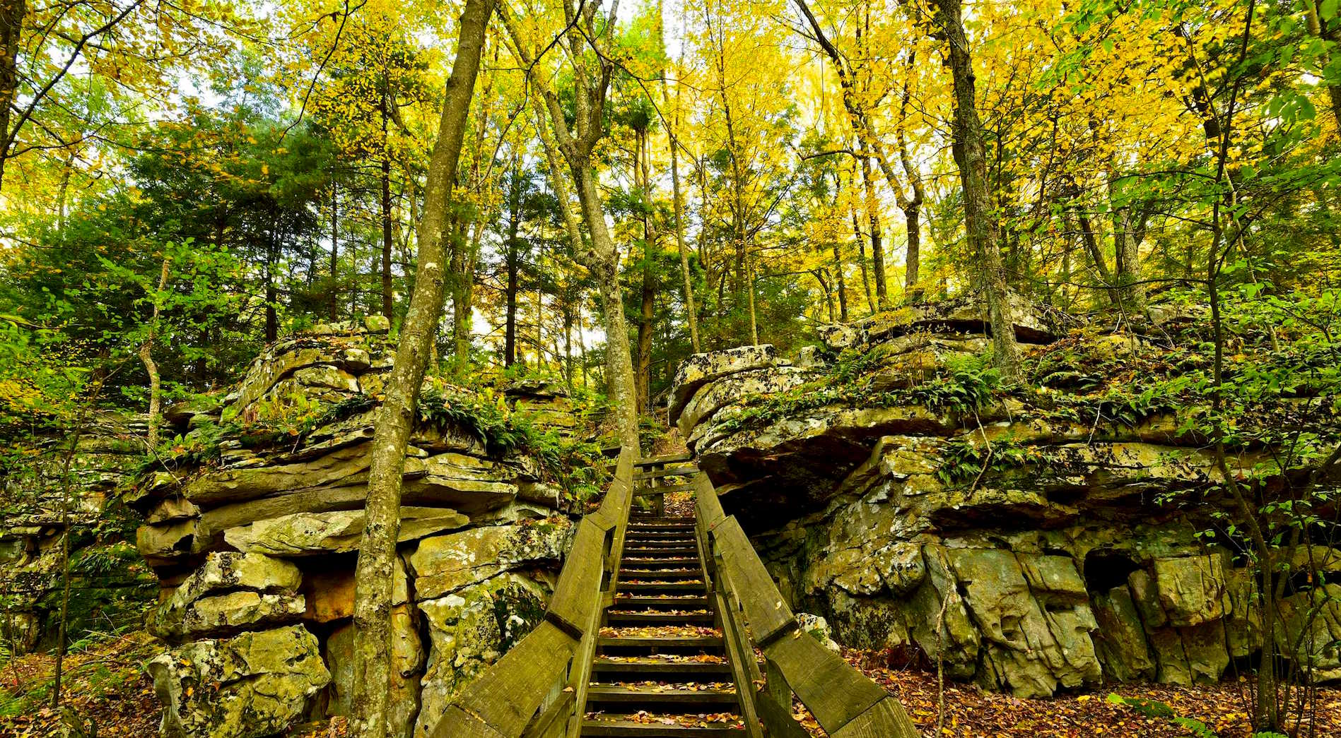 Beartown state park west virginia state parks west - Towne place at garden state park ...