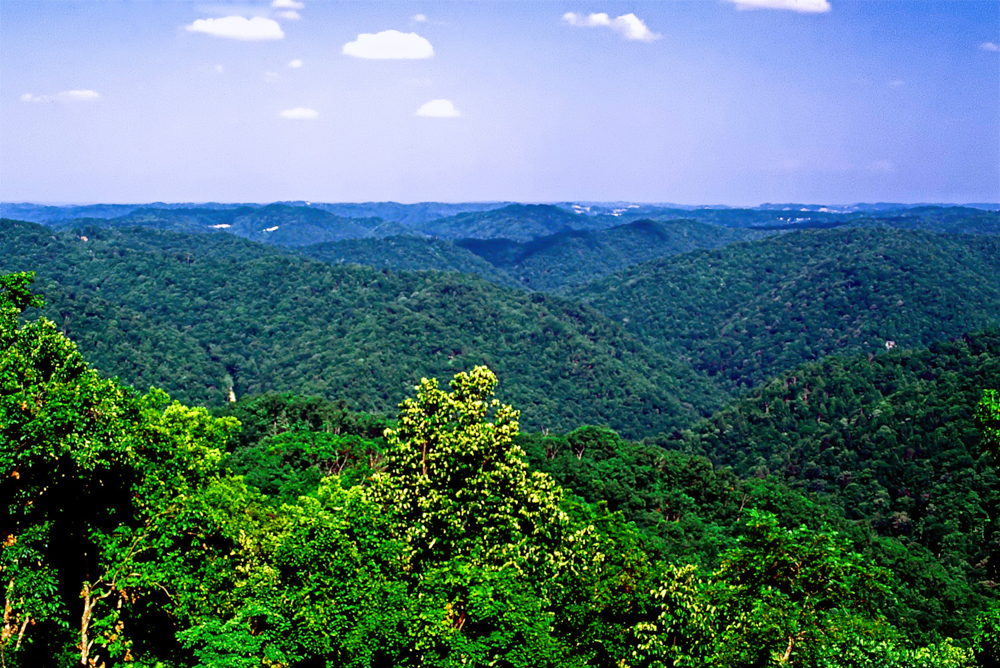 Panther State Forest - West Virginia State Parks - West