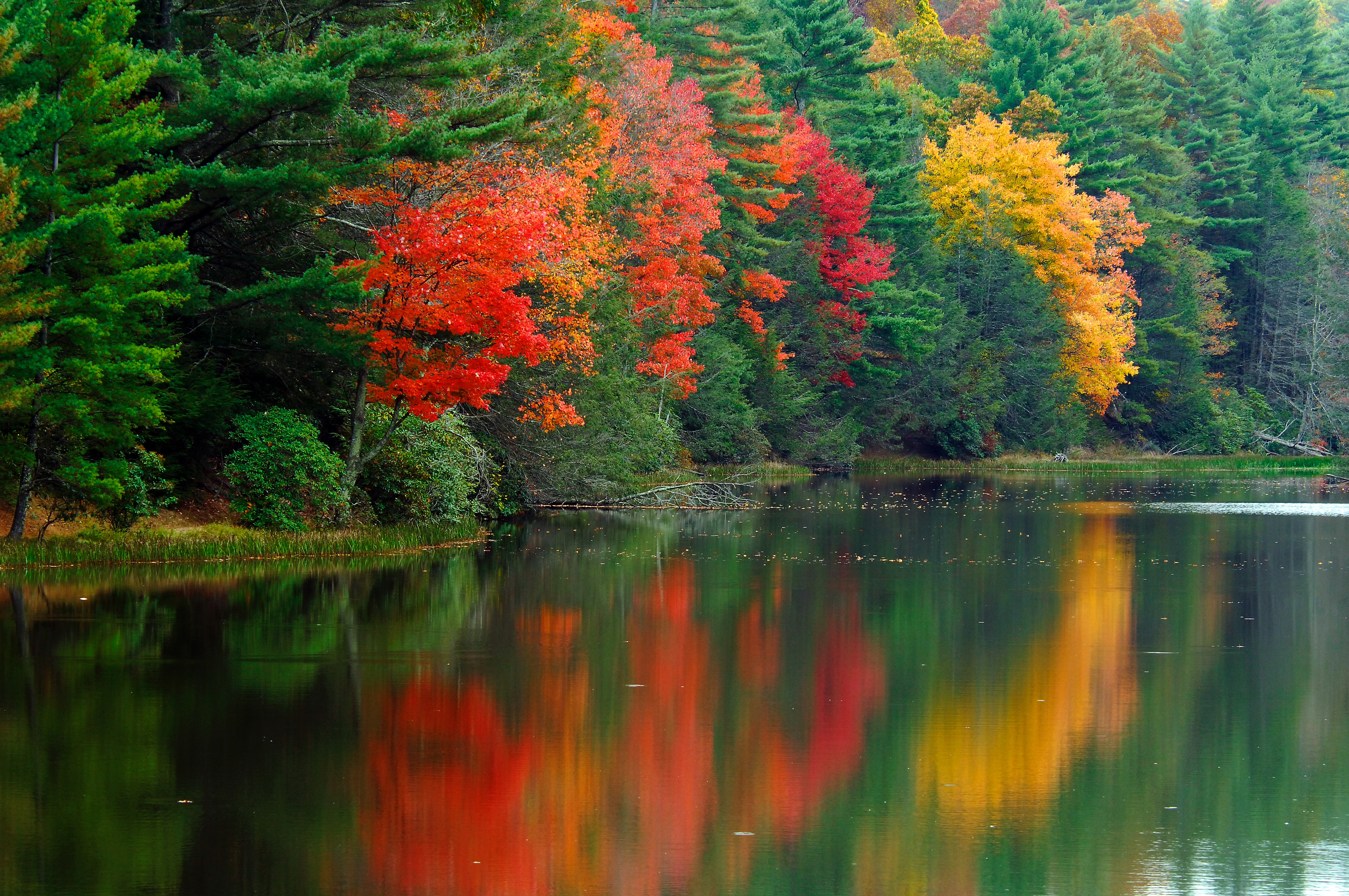 West Virginia State Parks\' Must See Fall Foliage Spots - West ...